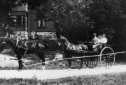 Hästtransport Särö. Bild 10513.