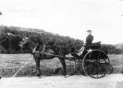 Hästtransport Särö. Bild 11004.