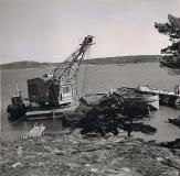 Särö båthamn. Bild 2823.