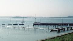Särö båthamn. Bild 2839.