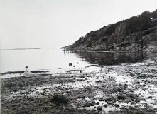 Särö båthamn. Bild 30185.