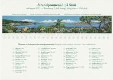 Växter Särö. Bild 1981.
