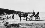 Hästtransport Särö. Bild 10889.