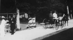 Hästtransport Särö. Bild 11038.