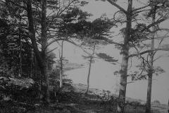 Nordanskog Särö. Bild 30163.
