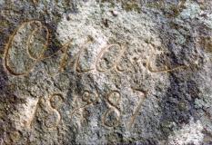 Oscar II Särö. Bild 11766.