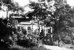 Flora Särö. Bild 10515.
