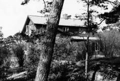 Flora Särö. Bild 10517.