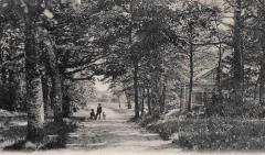 Platser Särö. Bild 10757.