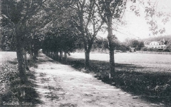 Platser Särö. Bild 10768.