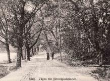 Platser Särö. Bild 10782.