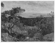 Utsikt från Västerskog