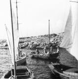 Segling Särö. Bild 1696.