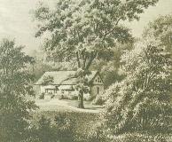 Skogshyddan Särö. Bild 1962.