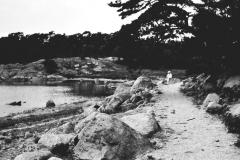 Strandparti Särö. Bild 2020.
