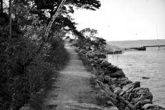 Strandparti Särö. Bild 2125.