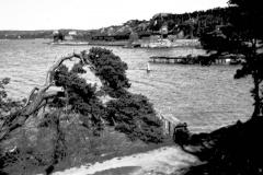 Strandparti Särö. Bild 2126.