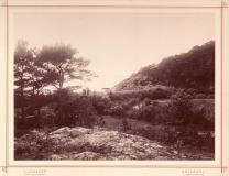 Strandparti Särö. Bild 1013.