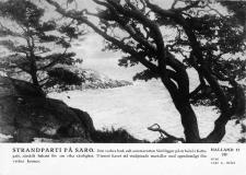 Strandparti Särö. Bild 10657.