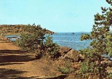 Strandparti Särö. Bild 10809b.