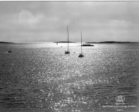 Strandparti Särö. Bild 10811.