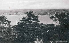 Strandparti Särö. Bild 10819.