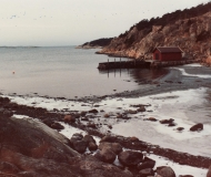 Strandparti Särö. Bild 10833.