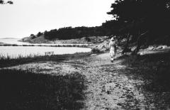 Strandparti Särö. Bild 2019.