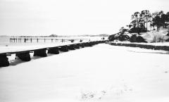 Strandparti Särö. Bild 2042.
