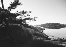 Strandpromenaden Särö. Bild 2179.
