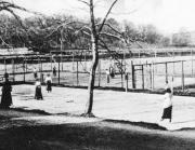 Tennis Särö. Bild 10217.