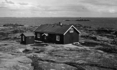 Tistlarna Särö. Bild 2334.