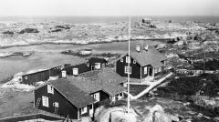 Tistlarna Särö. Bild 2341.