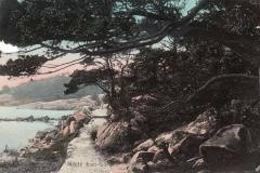 Västerskog Särö. Bild 10736.