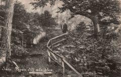 Västerskog Särö. Bild 10739.