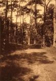Västerskog Särö. Bild 30153.